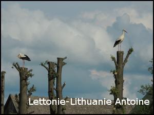Lettonie-Lithuanie